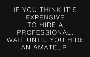 Artist if you think it's expensive to hire a professional wait till you hire an amateur