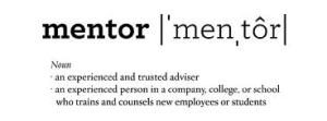impeccable mentor definition image