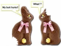 fundamentals Bunny conversation
