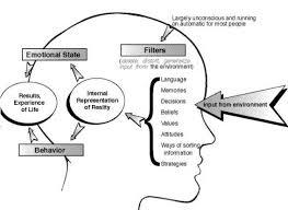 Music Input Brain Chart
