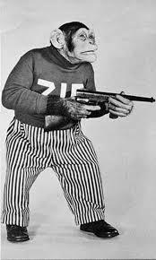 Bob Ezrin Monkey