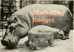 Humility Budget Hippos