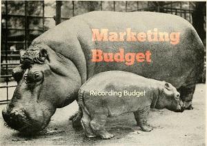 Humility Budget Hippos