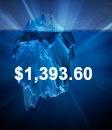 Iceberg $1,393