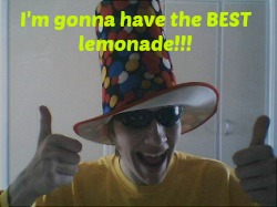 Invest Lemonade Idiot Meme