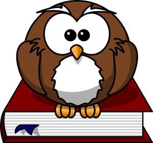 Worthless Smart Owl