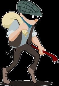 Will Burglar