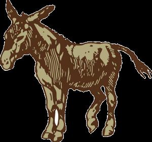 Path Donkey