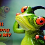 Permission Marketing Frog Feature