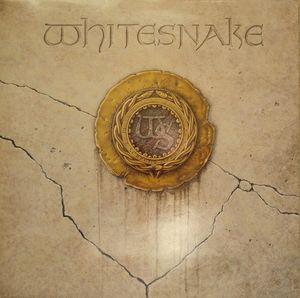 Proximity Whitesnake