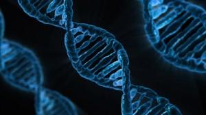 Content DNA