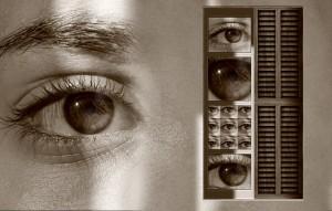 Perception Many Eyes