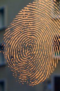 Find Your Sound Blueprint Fingerprint