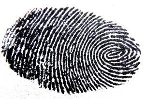 Clutter Fingerprint