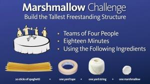 Kindergartener Marshmallow Challenge